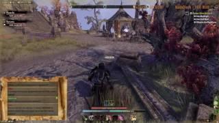 The Elder Scrolls Online: Фарм имперского города и общение =)