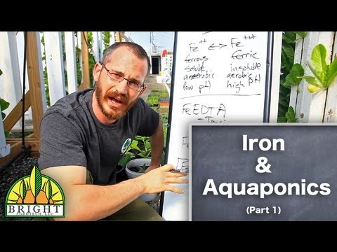 Iron in Aquaponics – Part 1