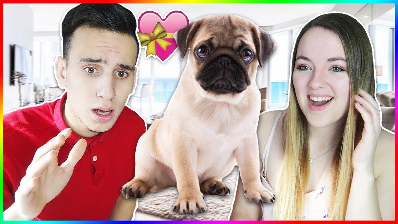 On Va Adopter Un Bebe Chien Youtube