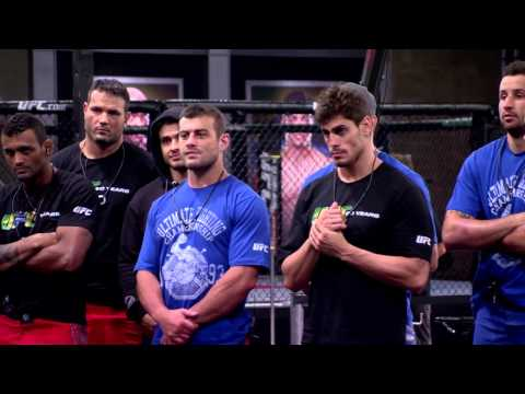 The Ultimate Fighter Brazil 3: Apologize Now!