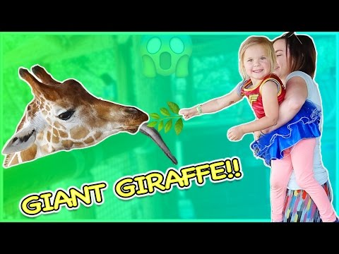 Thumbnail: BABY RORY FEEDS GIANT GIRAFFE! WILD ANIMAL LOOSE AT THE ZOO!!