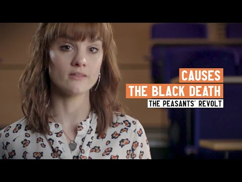 What Caused the Peasants' Revolt?   Part 1: The Black Death   2 Minute History