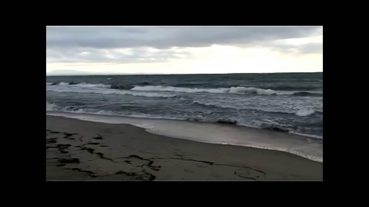 Dana Winner In Love With You lyrics - YouTube