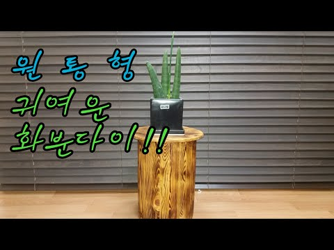 (최수노) 원목 원통형 화분다이 A Wooden Cylindrical Potted Stand