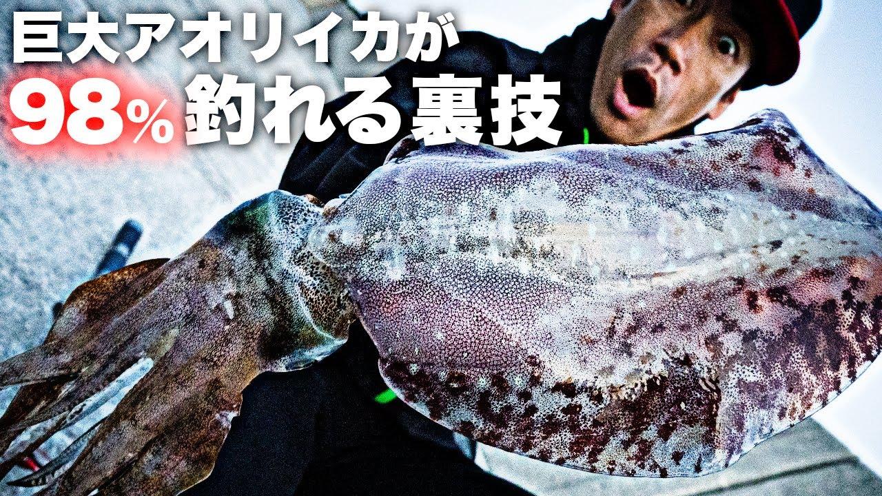 【衝撃】アオリイカが狂って釣れる最強仕掛け!!!