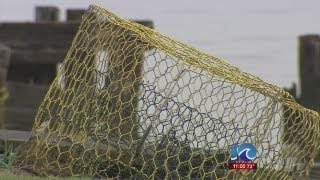 Brothers charged for more than 300 stolen crab pots