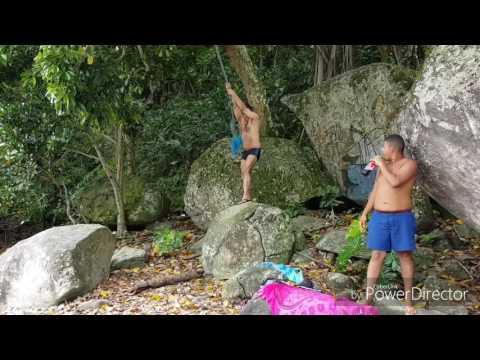 Grito do Tarzan