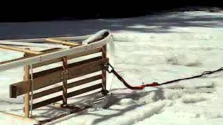 Rigging & Riding Your Dog Sled