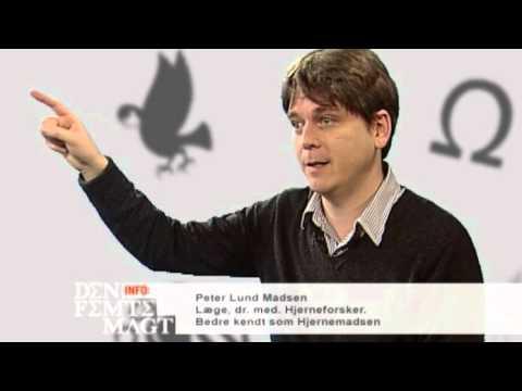 Peter Lund Madsen, Hjerneforsker