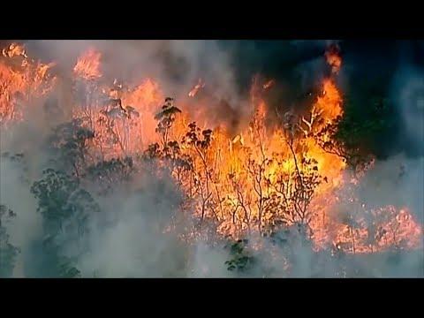 Latest Australian Wildfires Prompt Emergency Warning
