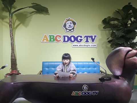 ABC DOG TV 어린이 방송체험