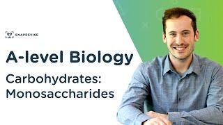 Carbohydrates: Monosaccharides   A-level Biology   OCR, AQA, Edexcel