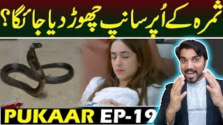 Pukaar Episode 19 |  Teaser Promo Review | Top Pakistani ARY Digital Drama #MRNOMAN