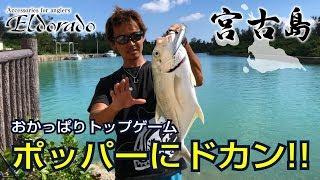【宮古島おかっぱり】防波堤の向こうで巨大メッキがドカン!