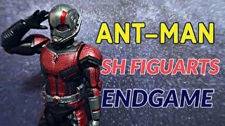 ANT MAN ACTION FIGURE REVIEW  | Avengers Endgame Sh Figuarts