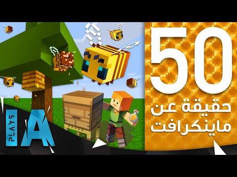 50     1.15    | IA Plays