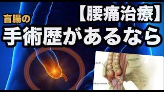 【腰痛】腹部の手術歴があるならココを見て!「なぜ、30年前の盲腸の手術跡が腰痛の原因になるのか?」【腰痛 治し方 ストレッチ】