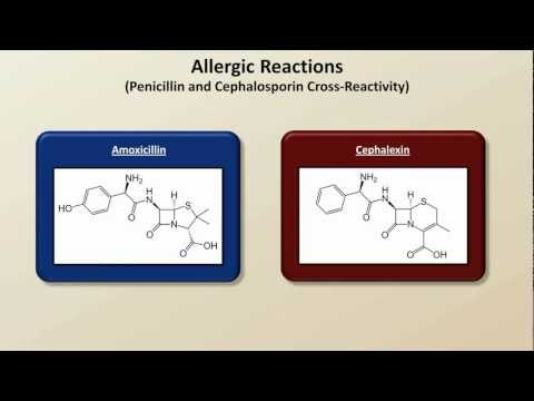 Important Side Effects and Toxicities (Antibiotics Lecture 8)