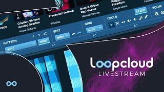 Loopcloud Workshop 004 | New Contest 6000+ in Prizes