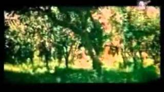 Hamayoun Gujjar Lollywood Pakistani-Punjabi Movie-06