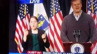 really animated sign language interpreter