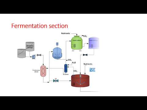 Ethyl Alcohol Manufacturing By Molasses Fermentation