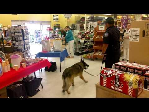 U.S. Customs in Blaine Washington, k9 dog
