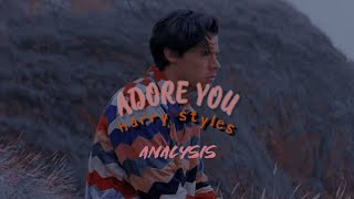 ADORE YOU BY HARRY STYLES ANALYSIS.