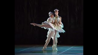 My First Ballet: Sleeping Beauty – Puss in Boots (Extract) | English National Ballet