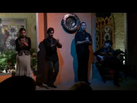 Flamenco show from Casa de la Memoria - Seville, Spain