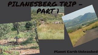 Pilanesburg Trip  South Africa - Part 1
