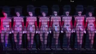 Кабаре Crazy Horse Paris эротическое шоу цены на шоу