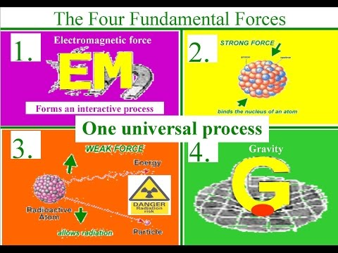 The Four Fundamental Forces within one Universal process