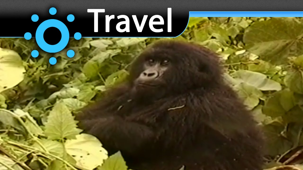 The Virunga National Park Vacation Travel Video Guide