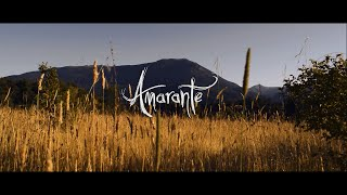 Amarante - In The Hollow Of Your Hand (Official Music Video)
