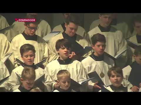 Pontifikalamt zum Hochfest