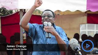 Conduct lifestyle audit on country's top leadership, says James Orengo