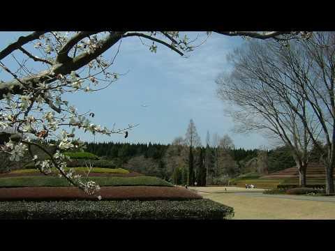 Chiba Prefectural Botanical Garden