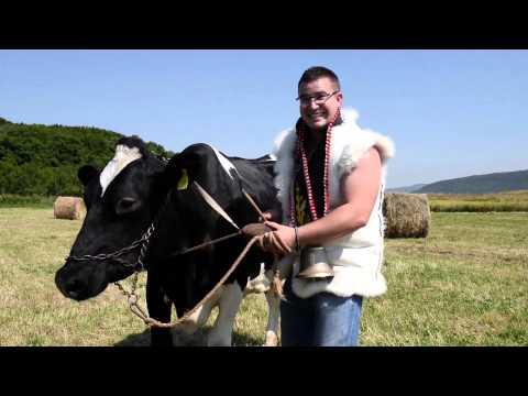 RAZBIJAČI ČAŠA - COPRNJICA (OFFICIAL VIDEO)