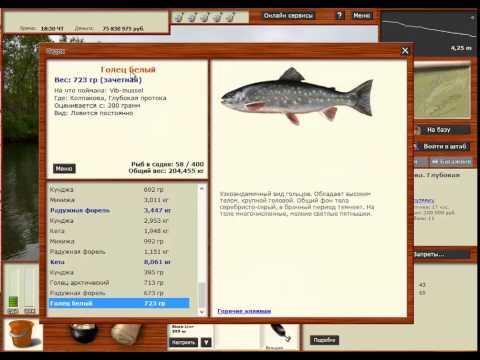 рыбалка как промысел божий