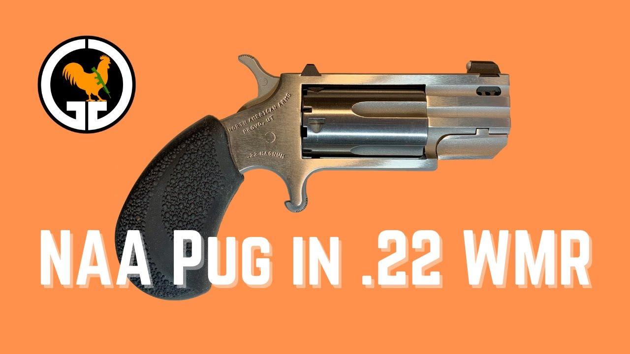 NAA Pug in .22 WMR