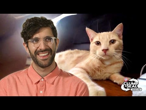 Thumbnail: People Surprise Their Roommates With A Cat // Presented By BuzzFeed & Clump & Seal