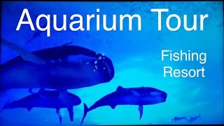Let's Play: Fishing Resort Wii, Aquarium Tour