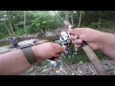 Creek Fishing HUGE Perch (Austin,Texas) PT. 1