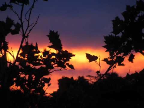 Evening rise