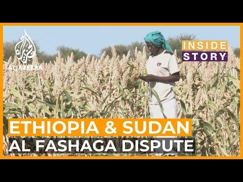 What's reigniting a border dispute between Ethiopia & Sudan?