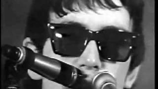 The Animals - We Gotta Get Out Of This Place (Live, 1965) ♫♥