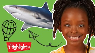 Highlights Kids - Animals! | Full Episode | Kids Videos | FUN with a Purpose