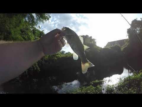 CREEK FISHING Downtown Wilmington NC! Surprise Fish!
