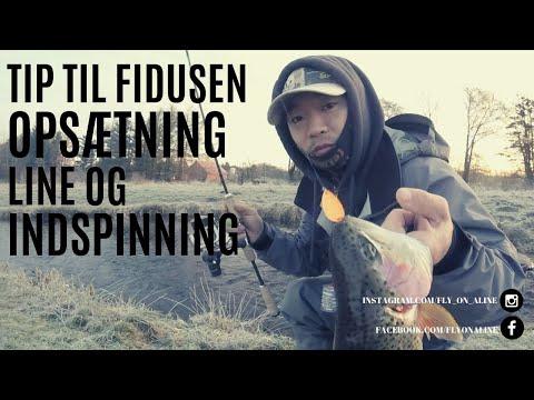 Tips til Fidusen - Opsætning - Line - Indspinning - Til dit put and take fiskeri